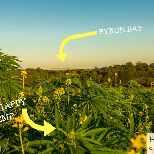 Happy Hemp in Byron Bay