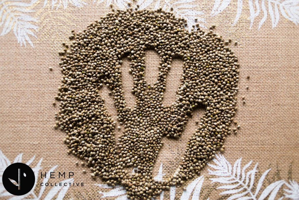 Hemp-Collective-Byron-Hemp-seeds
