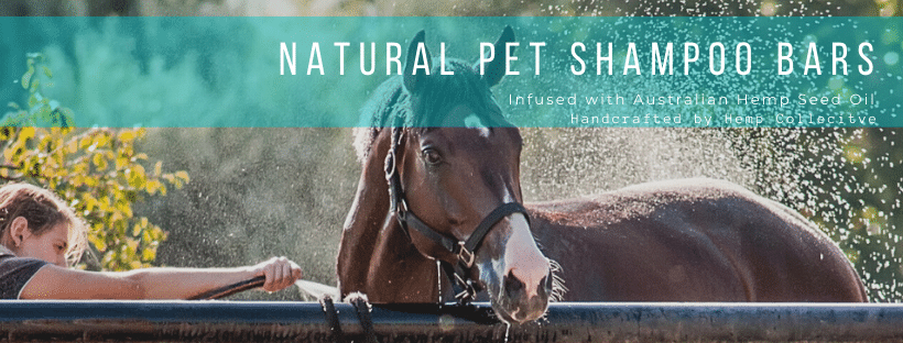 Natural Pet Shampoo Bar – infused with Hemp Seed Oil