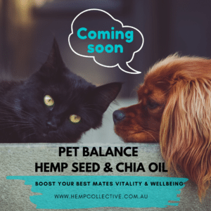Hemp-Collective-Pet-Balance